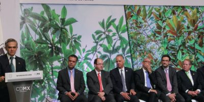 Mancera también anunció la donación de árboles por parte de la iniciativa privada Foto:Especial