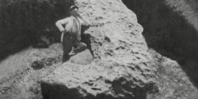 En un primer momento estimaron que pesaba 50 toneladas. Foto:Tomado del Museo Centro de Ciencias de Sinaloa