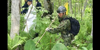 Yamato Tanooka, de siete años de edad, desapareció la semana pasada en un bosque de Japón. Foto:AP