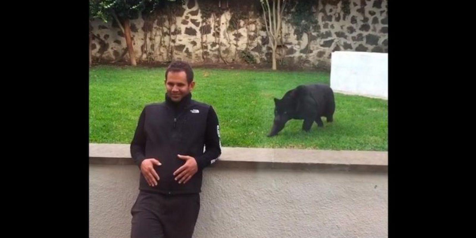 Un video que causa sensación muestra el ataque de la pantera a este hombre. Foto:Black Jaguar White Tiger Foundation
