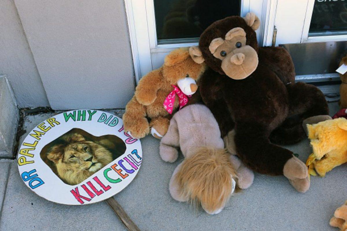 Se dejaron animales de peluche Foto:Getty Images