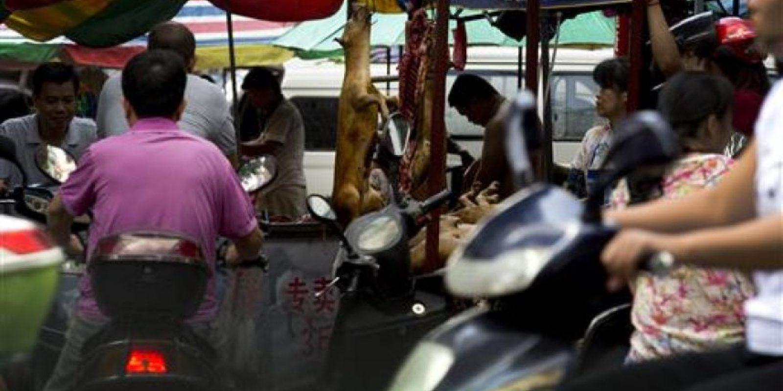 En donde se vende carne de perros Foto:AP