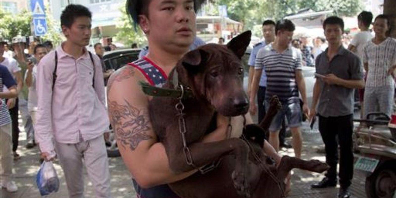 Algunos activistas compraron perros para rescatarlos Foto:AP