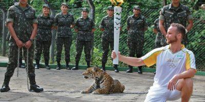 Matan a jaguar en evento con la antorcha olímpica de Río de Janeiro Foto:El Diario de Yucatán