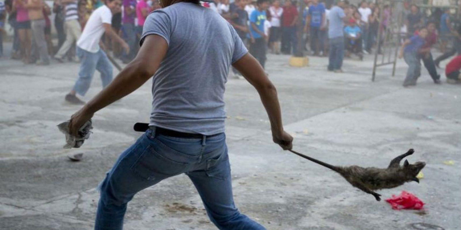 Esta es la fotografía original tomada por Hugo Borges para acompañar el reportaje. Foto:VICE