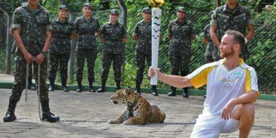 Intentó atacar a su cuidador Foto:AFP