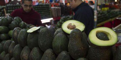 En algunas ciudades el precio máximo del aguacate ha llegado a 80 pesos el Kilo Foto:cuartoscuro