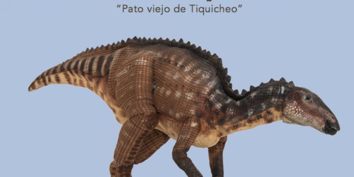 Paleontoartistas