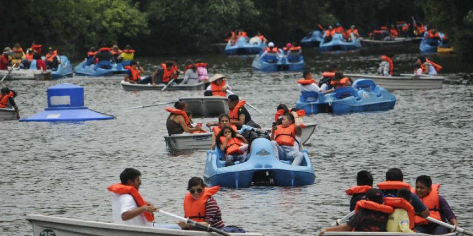 Bosque de Chapultepec Foto:Cuartoscuro