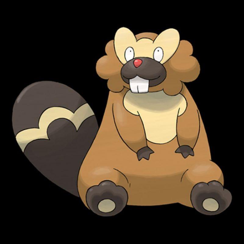 Bibarel, mascota del Pachuca Foto:Especial