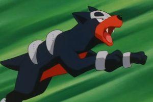 Houndour sería la mascota de los Xolos. Foto:Especial