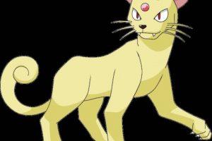 Persian y los Pumas no pueden estar separados. Foto:Especial