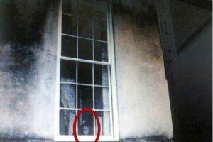 Una pequeña niña casi oculta Foto:Reddit