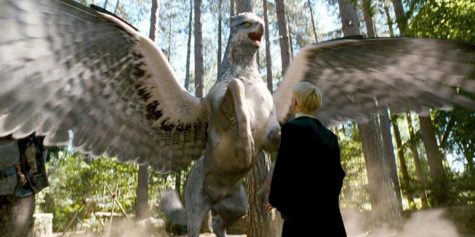 ¿Se imaginan encontrar una criatura así camino a la escuela o el trabajo? Foto:Facebook Harry Potter