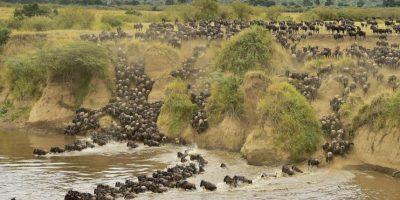 Paisaje en Kenia. Foto:AFP