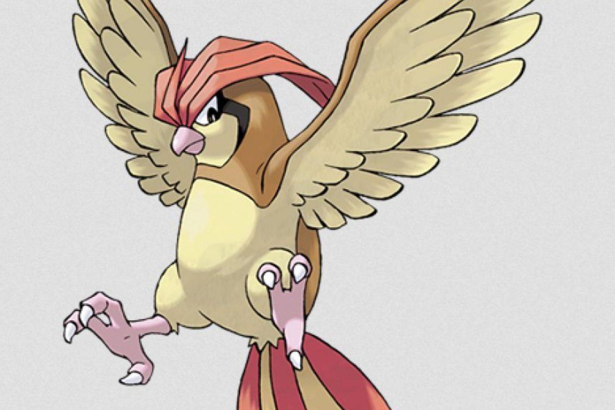 Libra: la evolución de Pidgey es Pidgeotto Foto:Especial