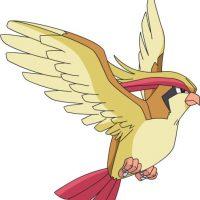 Libra: la evolución de Pidgeotto es Pidgeot Foto:Especial