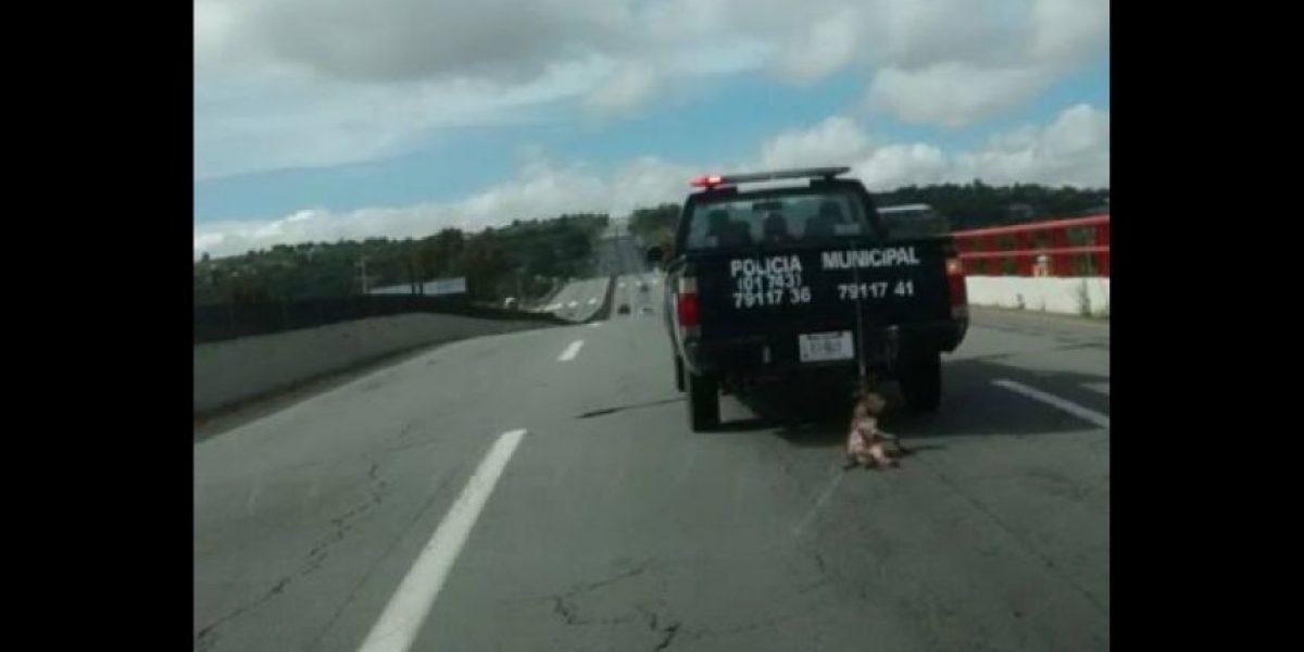 Exhiben a patrulla de Hidalgo arrastrando del cuello a un perro