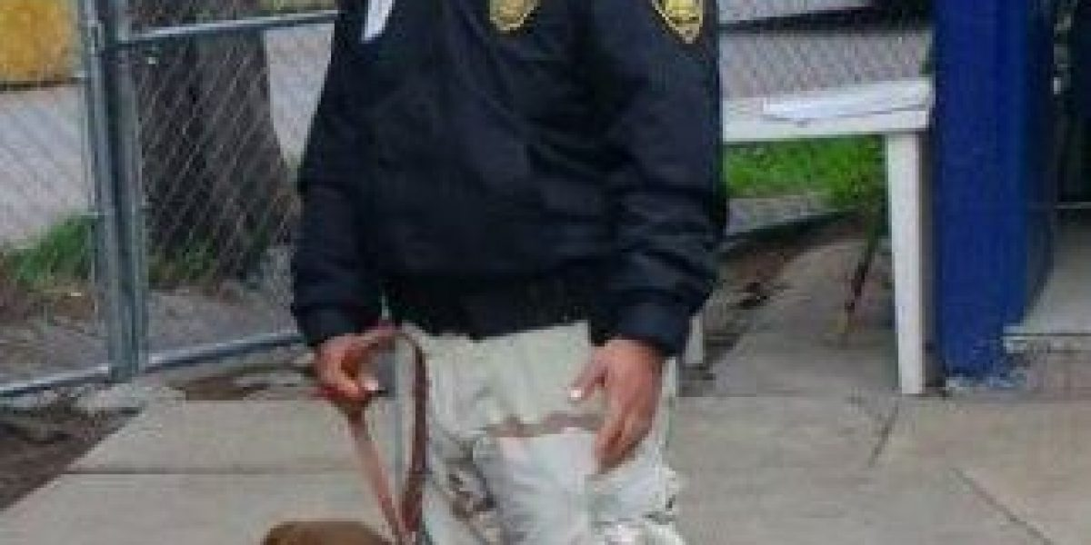 Policía rescata a perro que era utilizado para peleas  en Xochimilco