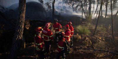 El incendio comenzó por la noche, testigos aseguran que el fuego empezó en un vehículo Foto:Gettyimages/ Archivo