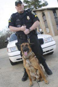 Las fuerzas de policía en las ciudades más importantes del mundo utilizan perros para rastrear criminales Foto:Getty Images