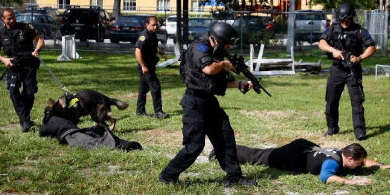 La mayoría de los perros policía son machos, sin castrar para que mantengan su agresividad natural Foto:Getty Images