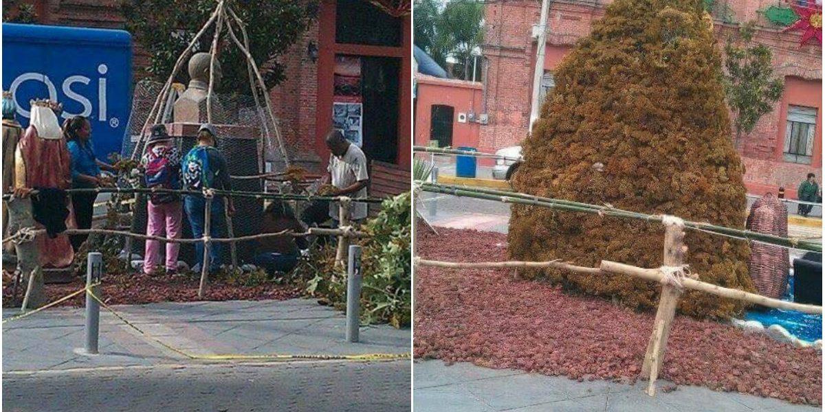 VIDEO: tapan busto de Benito Juárez para poner árbol de navidad en Chapala, Jalisco
