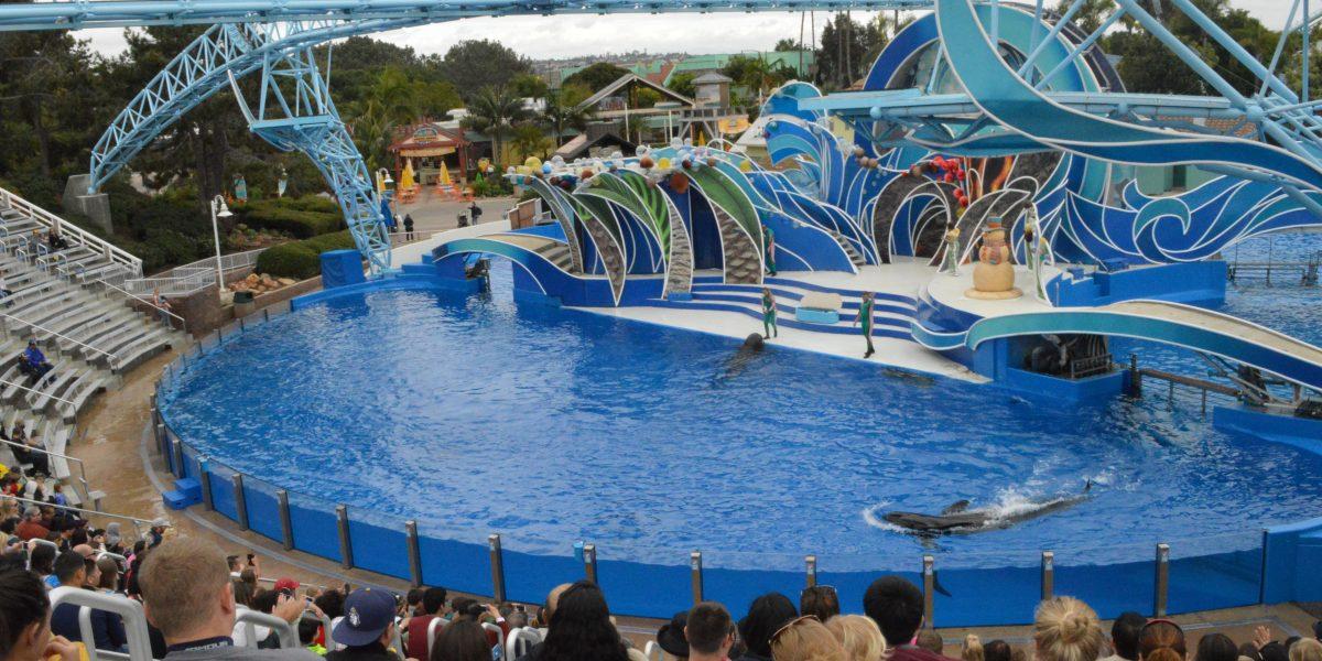 Vive las fiestas en SeaWorld