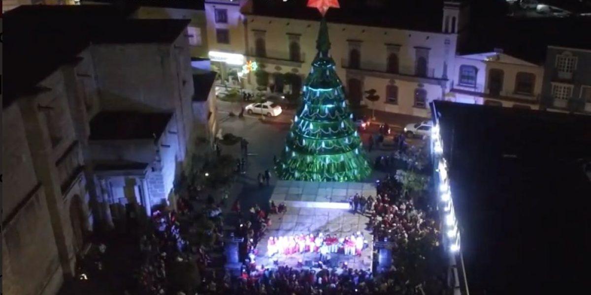 Zapotlanejo, ostenta Árbol de Navidad de 25 metros de altura