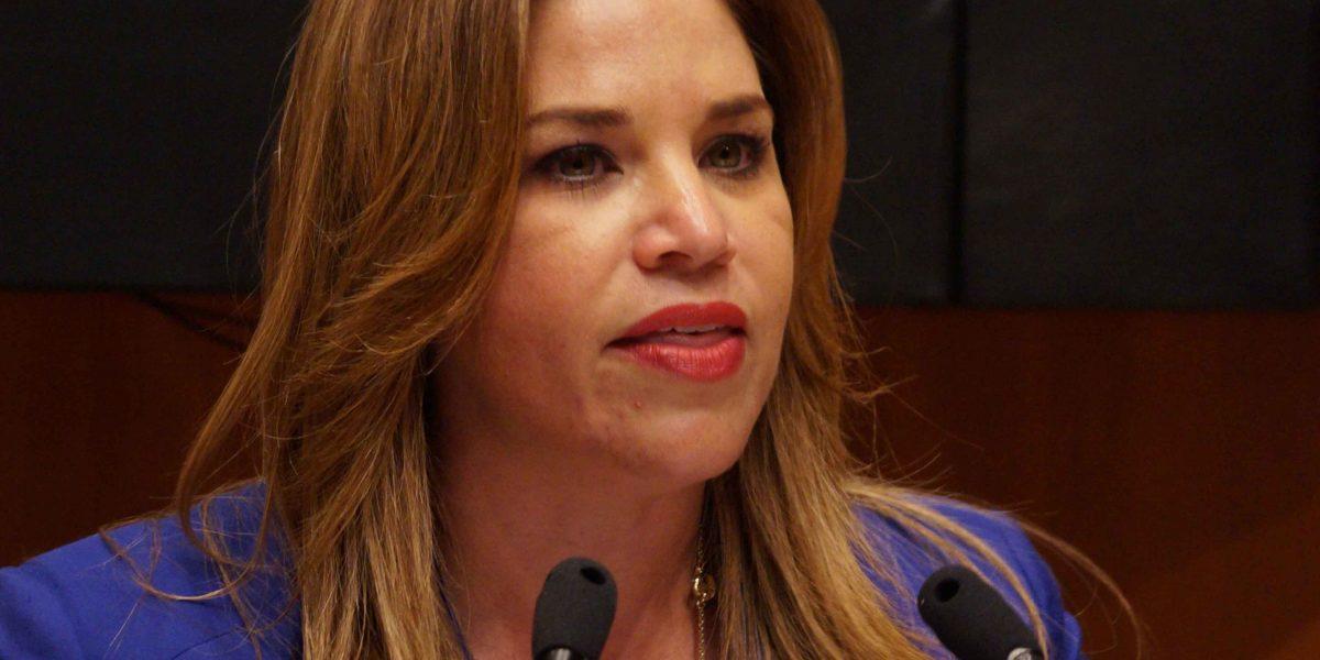 Senadores priistas alertan por aumento de suicidios en Navidad