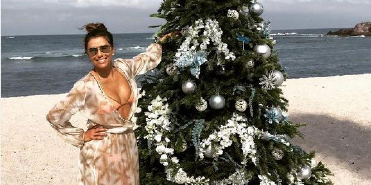 ¿Qué hicieron los famosos en Navidad?