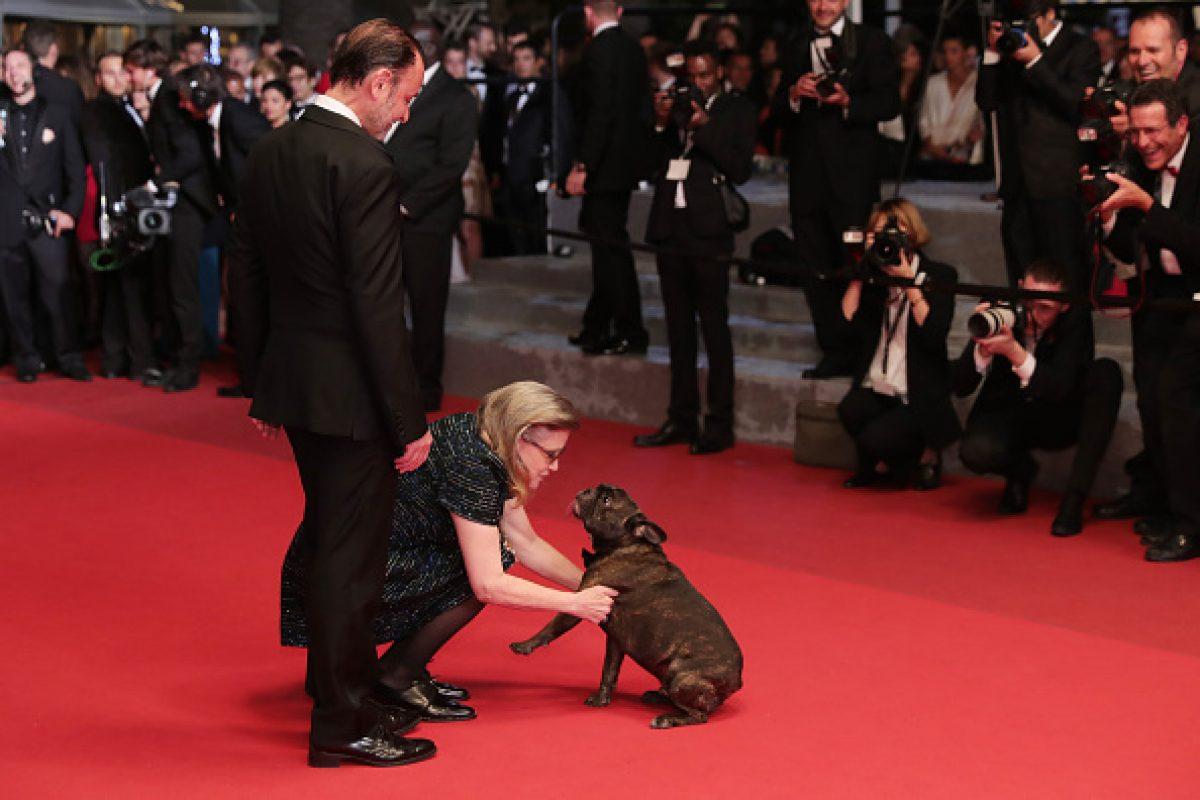 © 2016 Getty Images. Imagen Por: Gary Fisher, el perro de la princesa Leia. Foto | Getty