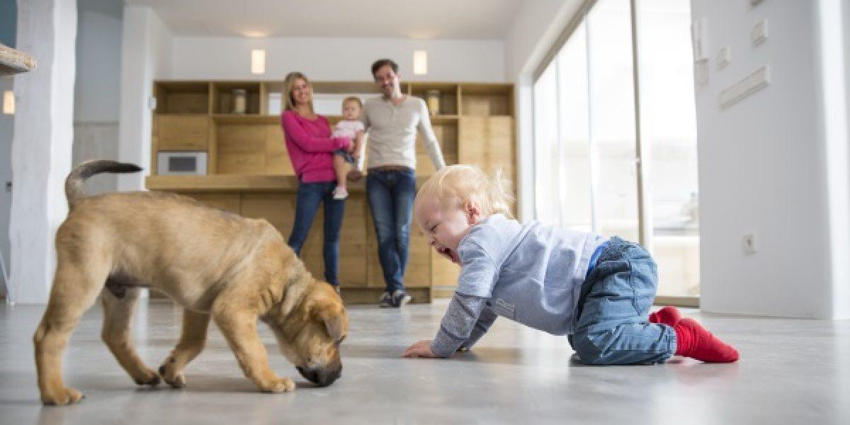 Lo bueno y lo malo de tener una mascota