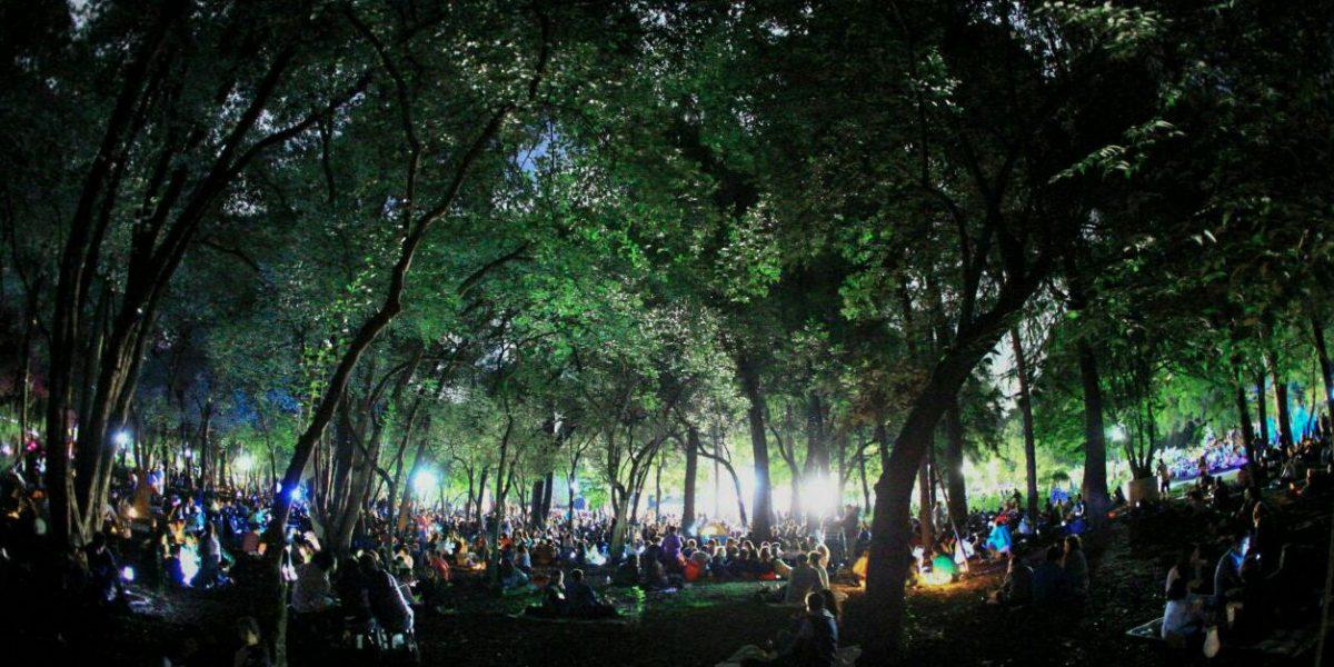 Asiste a un picnic a la luz de la luna en la CDMX