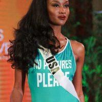 Miss Universo 2016. Imagen Por: Vía instagram.com/missusa/