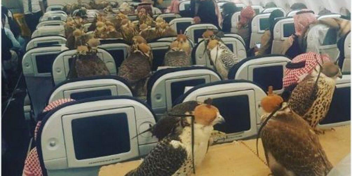 Príncipe viaja con sus 80 halcones en primera clase