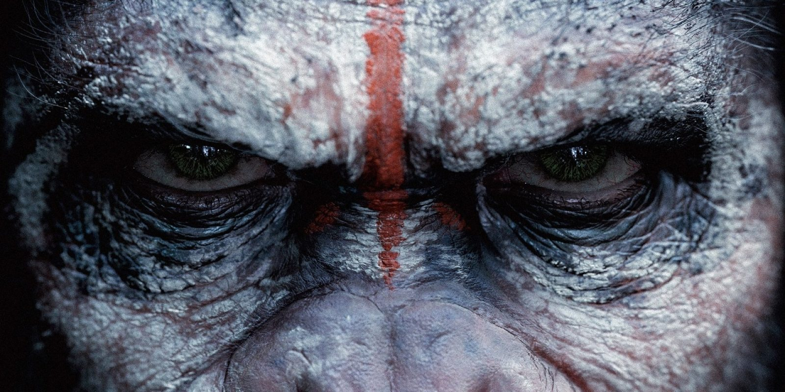 caesar-in-dawn-of-the-planet-of-the-apes-wallpaper_u925
