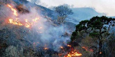 Mueren cuatro personas por intentar apagar incendio en Oaxaca