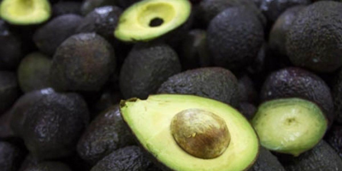 Aumentan exportaciones de 20 productos agroalimentarios mexicanos