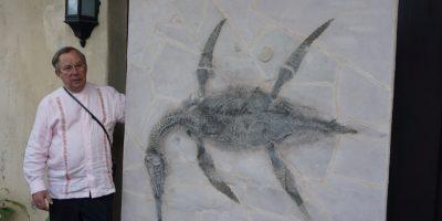 En Saltillo, presentan al mundo una nueva especie de reptil marino