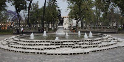 Alertan por altos niveles de polen en la Ciudad de México