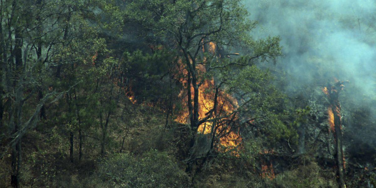 Controlan 70% de incendio en Santa María, Cuernavaca