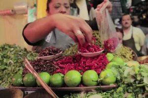 Productores mexicanos promueven dieta a base de insectos