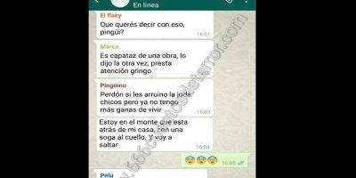 Pingu7