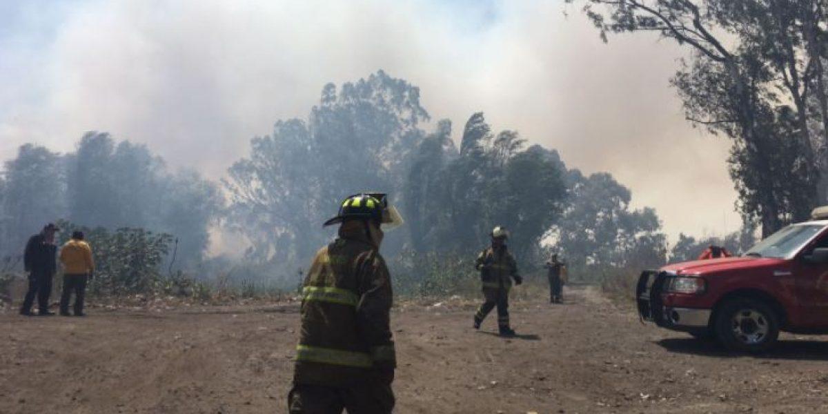 VIDEO: Se registra incendio en zona ecológica de Xochimilco