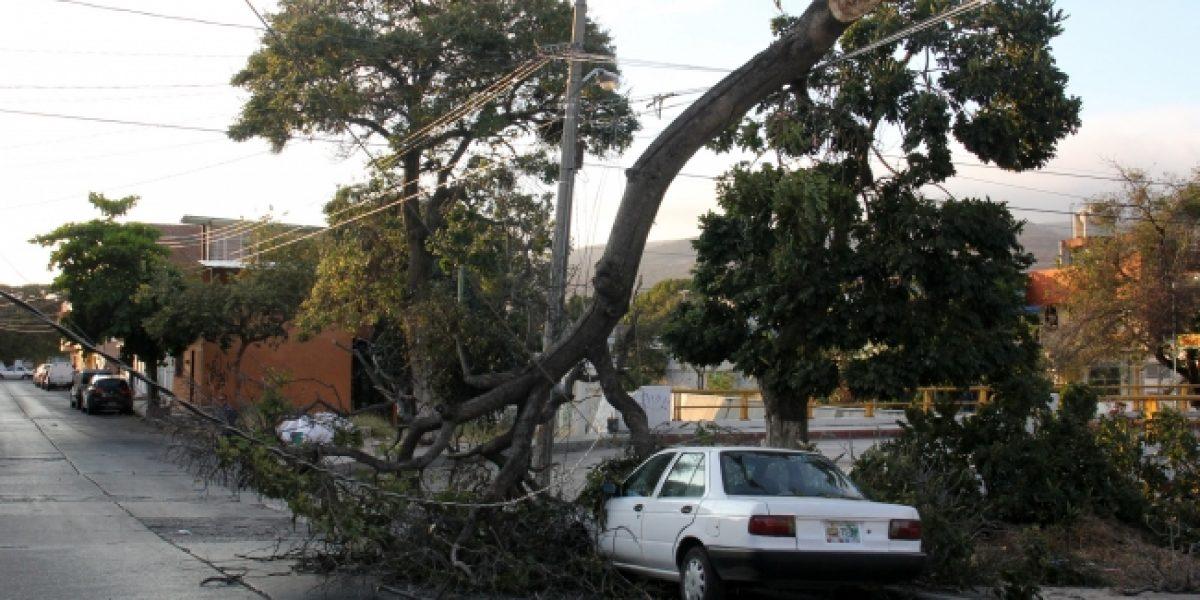 Seguirán fuertes vientos en estados del norte del país