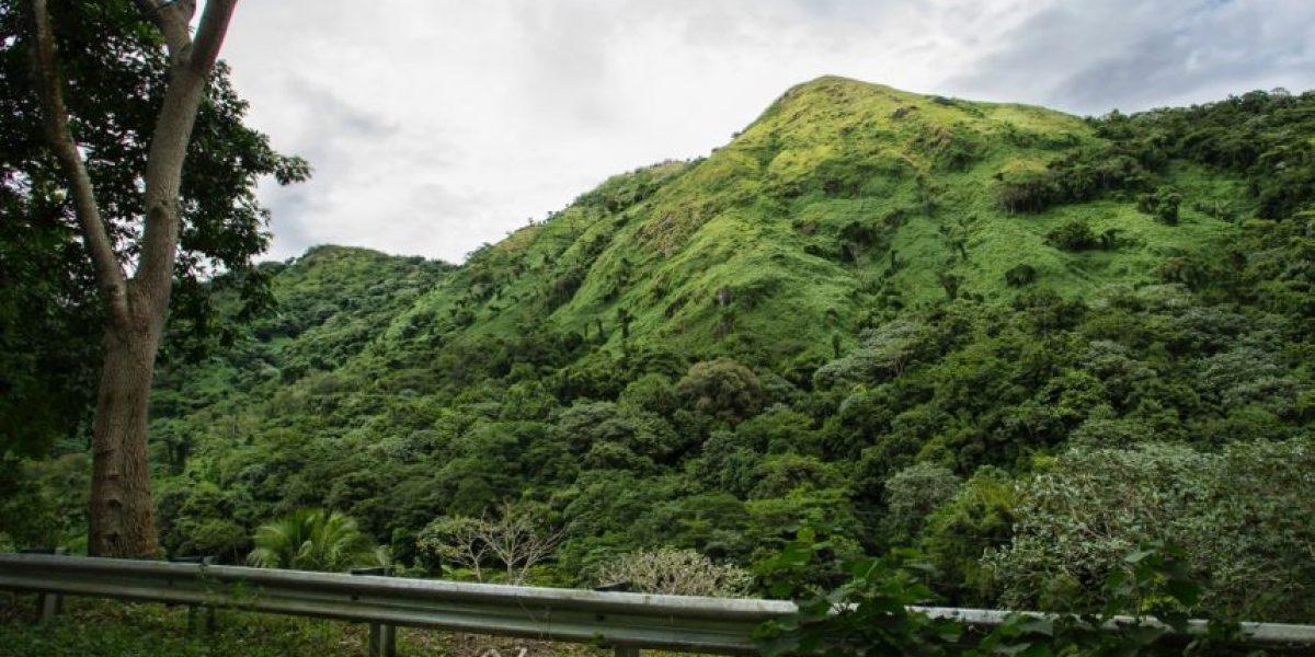 Municipio de Utuado compró otra finca para construir coliseo