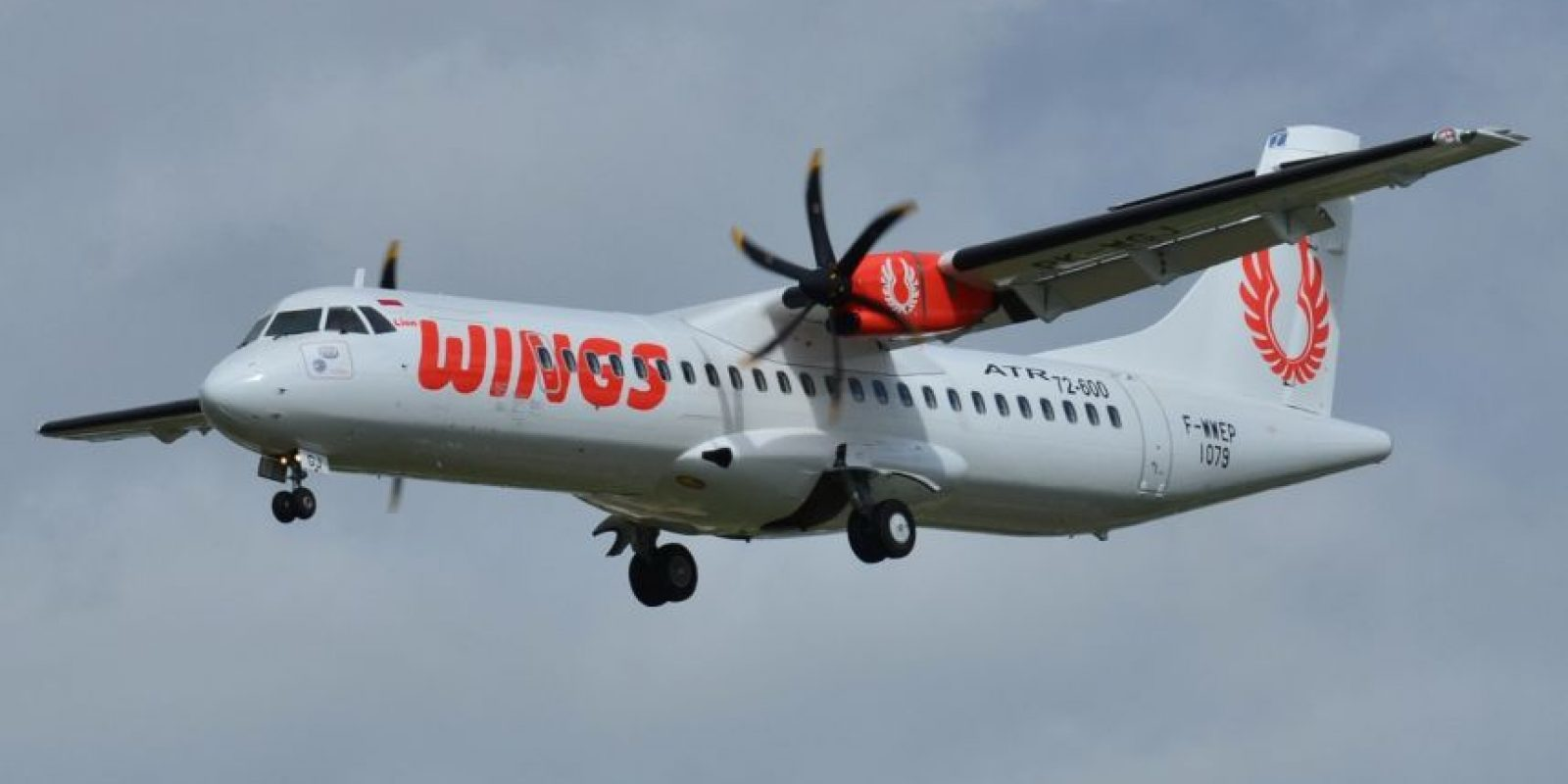 Wings Air Foto: Wikipedia Commons. Imagen Por: