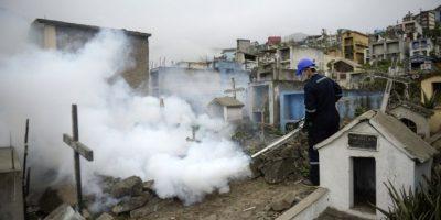 El virus Zika comienza a propagarse por América Latina. Foto:AFP. Imagen Por: