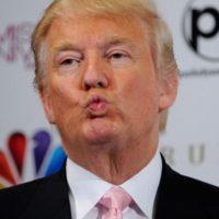 2- Sobre su temperamento: Foto:Getty Images. Imagen Por:
